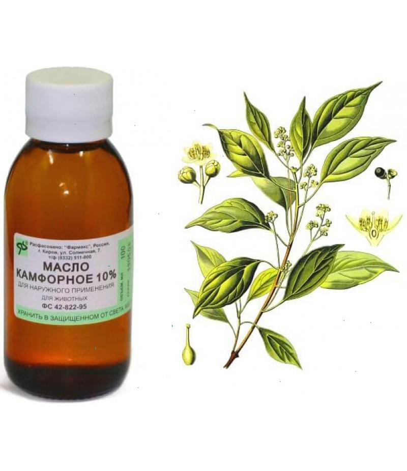 Camphor oil 10% 30ml